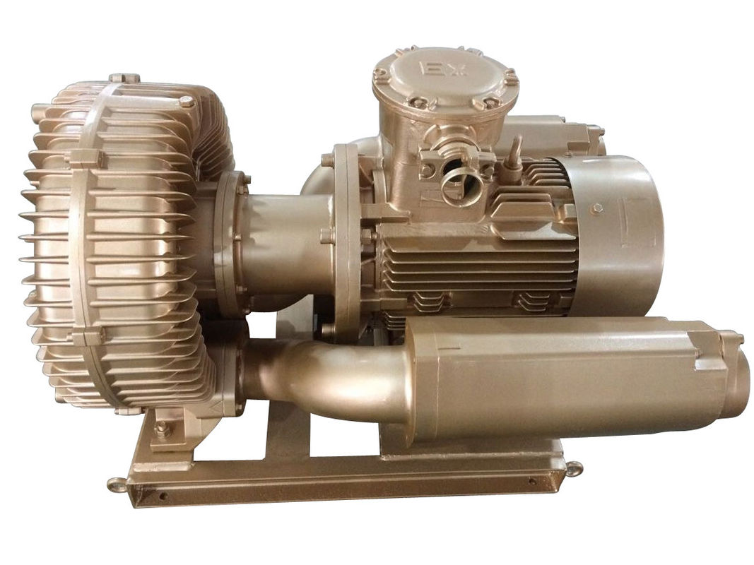 7.5kw Explosion Proof Vacuum Pump Ring Blower With Siemens Motor
